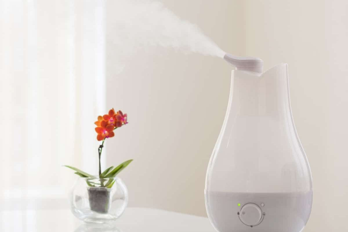 How Humid Should My House Be: A Homeowners Guide