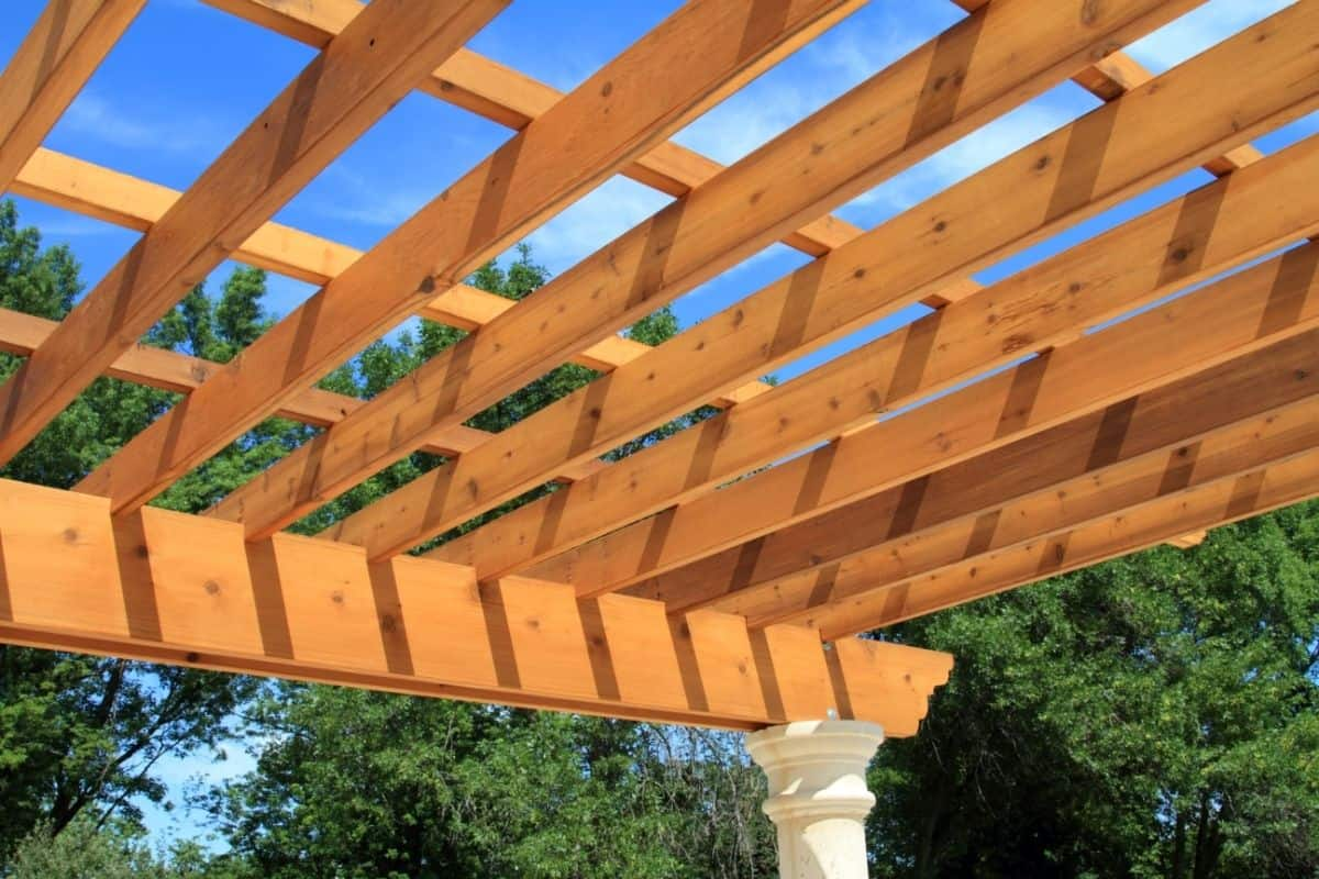 What Is a Pergola? (Plus: Why You Might Love One!)